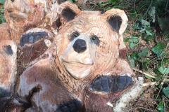 bears-14