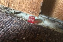 We found a die under the paneling.