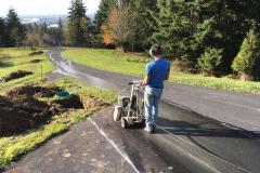 Cutting our beautiful driveway