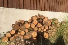 cedar-removal-63
